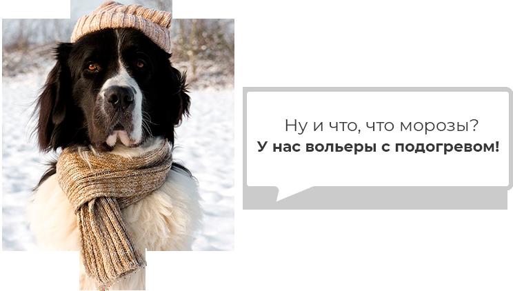 pidigriv-ru